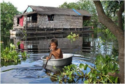 ecosistema-de-birmania.jpg